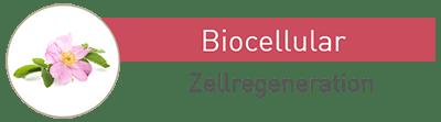 Massada Biocellular